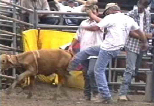 Stop the Rodeo Violence NOW